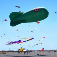 Animations 2020 Cayeux sur mer